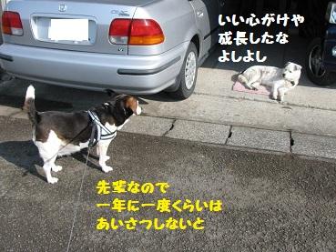 012_20120104203406.jpg