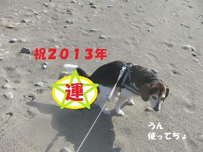 017_20130113125437.jpg