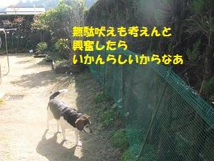 022_20130220221225.jpg