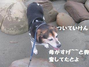 030_20111002191103.jpg