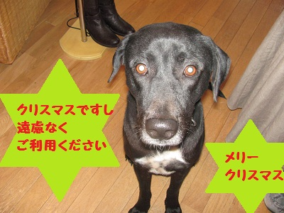 049_20111224222636.jpg