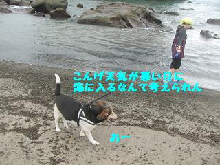 IMG_6478.jpg
