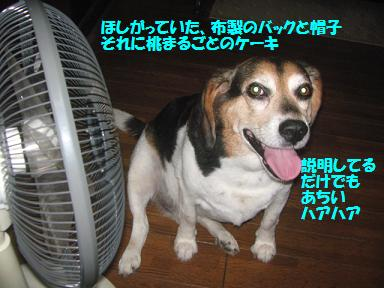 IMG_6647_2.jpg