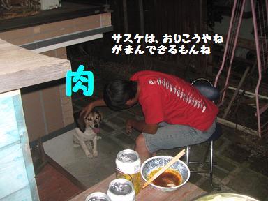 IMG_6874.jpg