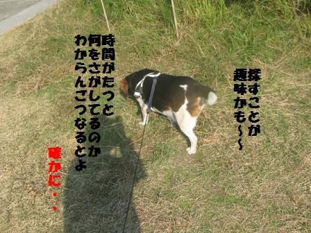 IMG_7529.jpg