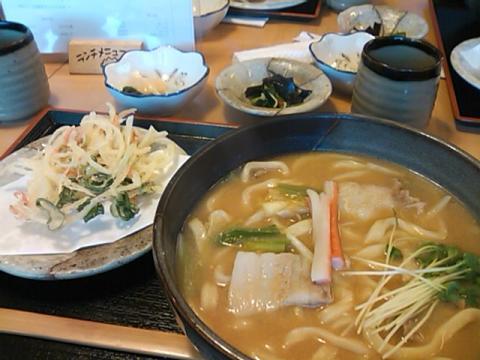 20100425_Udon.jpg