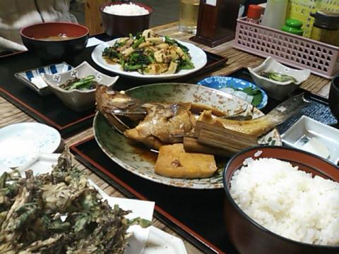 20101112_Kinokawa_20101118144100.jpg
