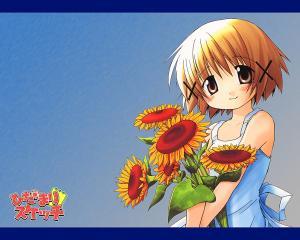 hidamari011_sx.jpg