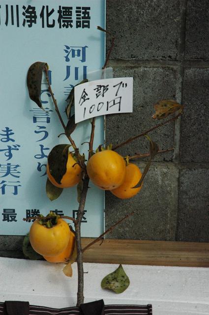 渡辺商店3
