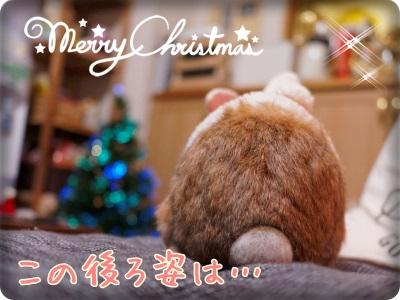 cookieblo131225.jpg