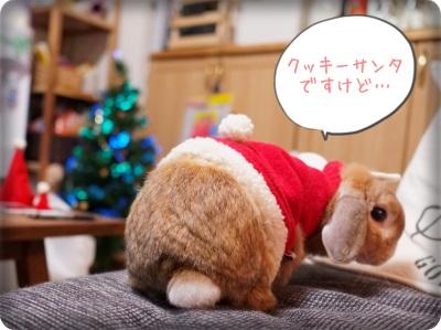 cookieblo1312251.jpg