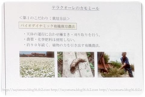 sayomaru5-524.jpg
