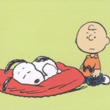 クッションの上で寝る(2)