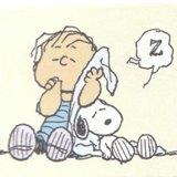 ライナスの毛布の上でも寝る