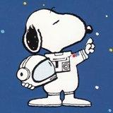わたしはカモメ_by Charles M.Schulz
