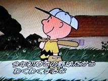 今年初めての野球だからわくわくするな