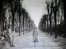 映画「第3の男 」ジョゼフ・コットン(1949 )ラストシーン