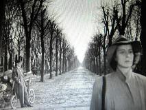 映画「第3の男 」ジョゼフ・コットン(1949 )ラストシーン.