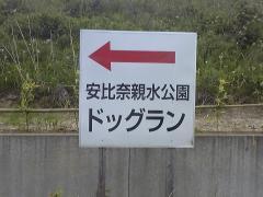 SH370120.jpg