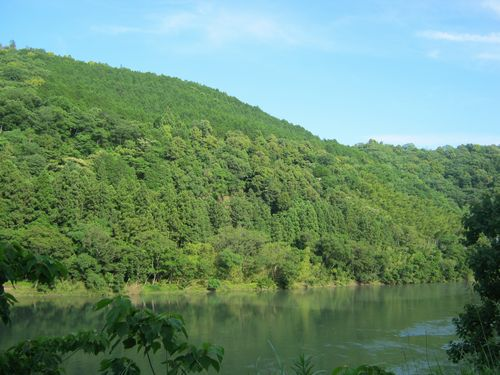 川、緑、空