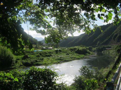 陽射しと木陰と川