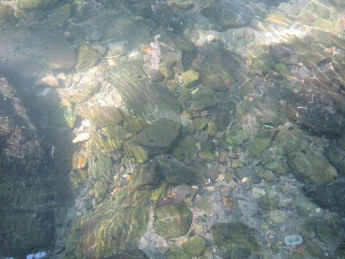 冷たい川の水