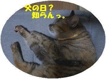 R0010940.jpg