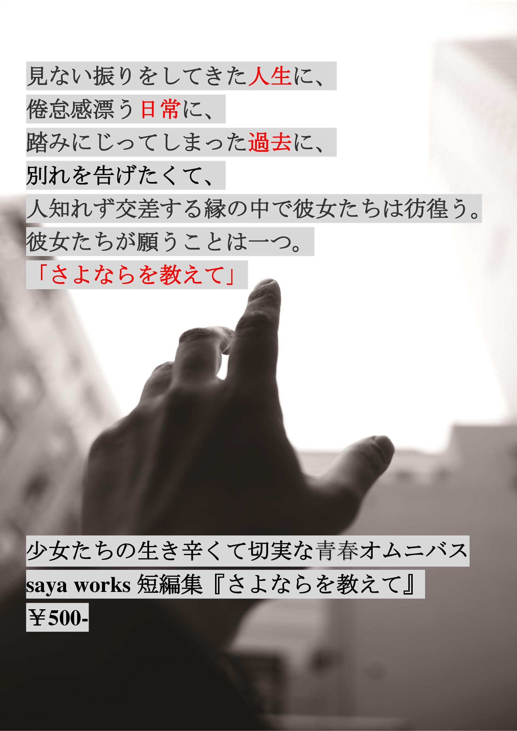 19回文フリポスター1(修正)