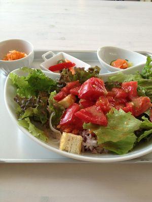 愛知 瀬戸 Tanecafe カフェ ランチ わんこ おでかけ ドライブ ドックカフェ 有機野菜 かき氷