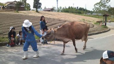 07 牛の乳搾りもできるぜ!!!.jpg