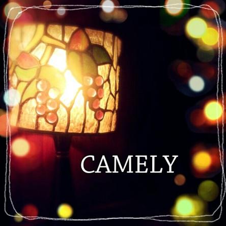 コピー (1) ~ CAMELY ブログ用