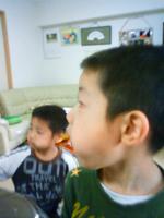 NEC_40069307.jpg