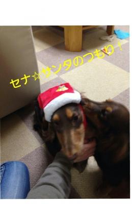 20131210_084845.jpg