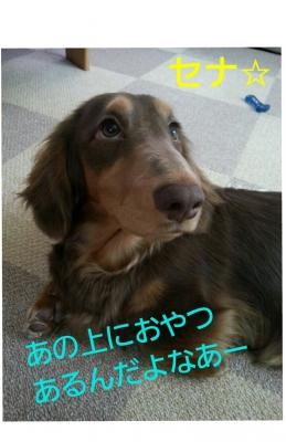 20131210_112804.jpg