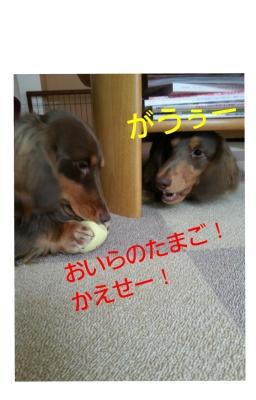 20131222_115945.jpg