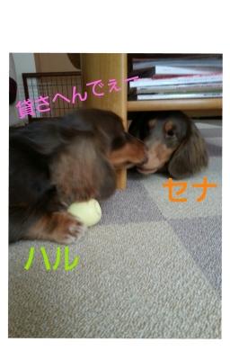 20131222_120651.jpg