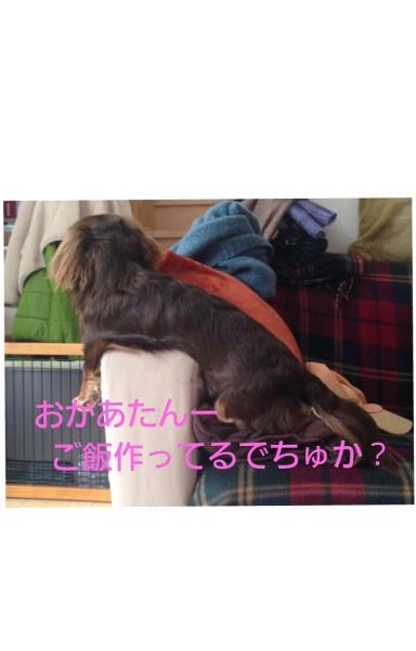 20140119_011754.jpg