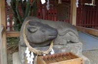 塩釜神社8撫で牛