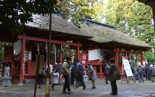 賀茂神社2014初詣4