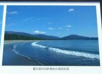 陸前高田19震災前の高田松原海岸