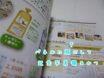 P1010280_convert_20121127203320.jpg