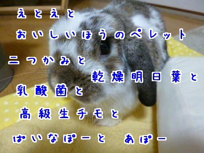 P1010288_convert_20121201193457.jpg