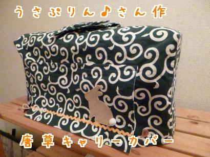 P1010461_convert_20121214202624_convert_20121214203311.jpg