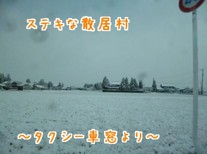 P1010482_convert_20121220194237.jpg