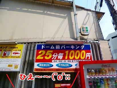 P1020321.jpg