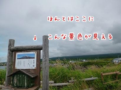 P1030511.jpg