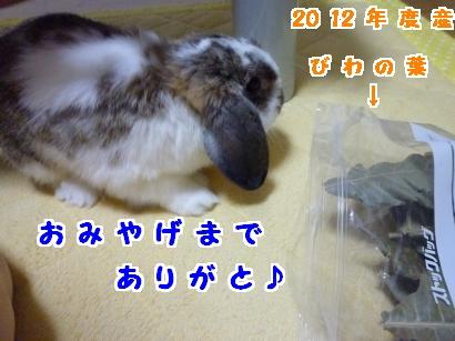 P1110984_convert_20120717203006.jpg