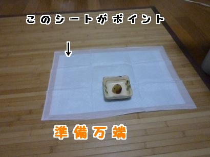 P1120033_convert_20120718184103.jpg