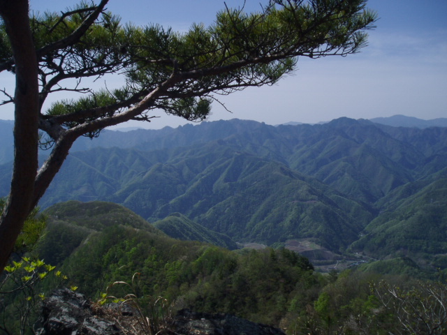 笠丸山 017