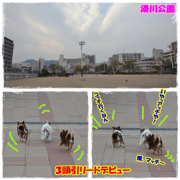 page_20120411192021.jpg